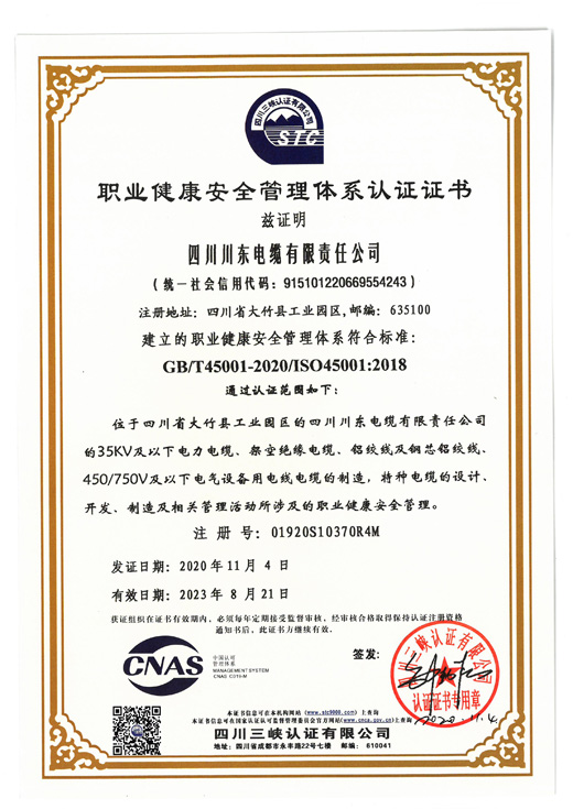 Occupational health system certificate